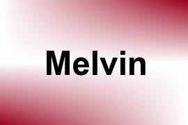 Melvin name image
