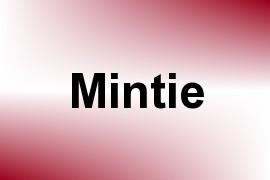 Mintie name image