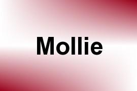 Mollie name image