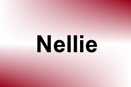 Nellie name image