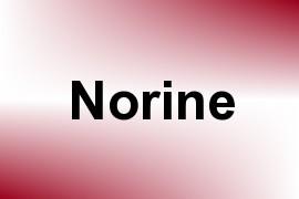 Norine name image