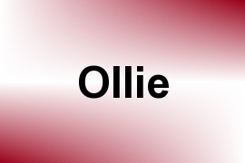 Ollie name image