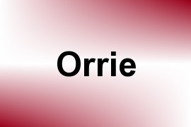 Orrie name image