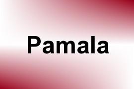 Pamala name image