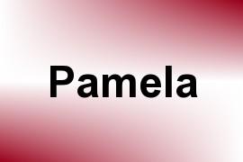 Pamela name image