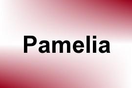 Pamelia name image