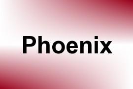 Phoenix name image
