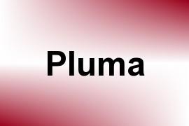 Pluma name image