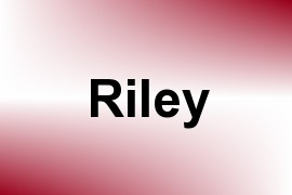 Riley name image