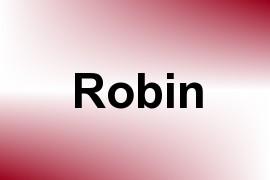 Robin name image