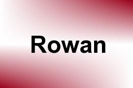 Rowan name image