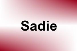 Sadie name image