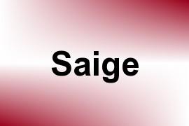 Saige name image