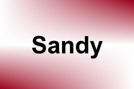 Sandy name image