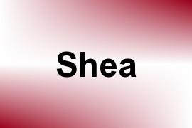 Shea name image