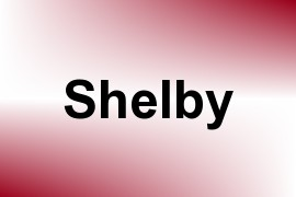 Shelby name image