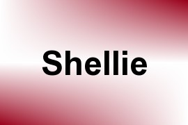 Shellie name image