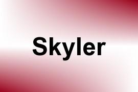 Skyler name image