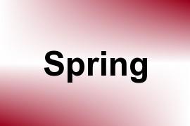 Spring name image