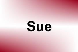 Sue name image