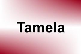 Tamela name image