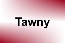Tawny name image