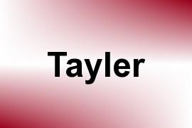 Tayler name image