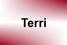 Terri name image