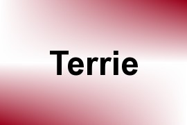 Terrie name image