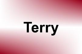 Terry name image