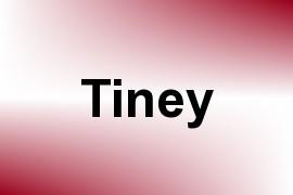 Tiney name image