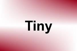 Tiny name image