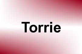 Torrie name image