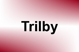 Trilby name image