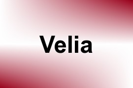 Velia name image