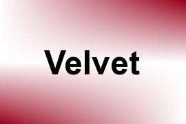 Velvet name image