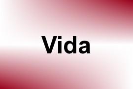Vida name image