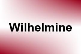 Wilhelmine name image