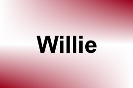 Willie name image