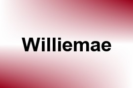 Williemae name image