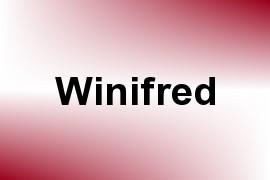Winifred name image