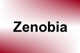 Zenobia name image